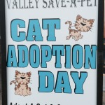 Animal Rescue & Adoption